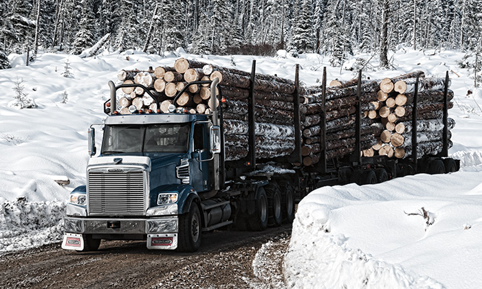 122sd-logging-2-trailer-500x300.jpg